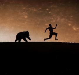 exit-pursued-bear-001_4654